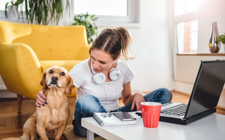 Woman working in living room and petting her dog