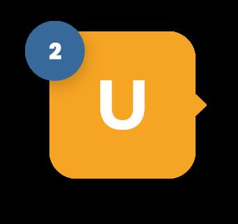 2U Image
