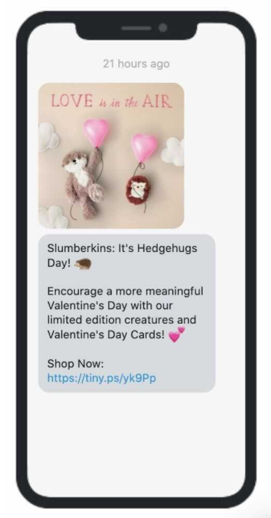 Sample Teaser Valentine's Day Email from Slumberkins